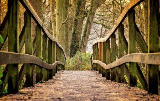 Rêver de chemin interprétation