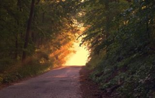 Rêver de chemin signification