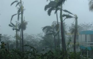 Rêver d'ouragan