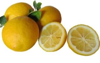 Rêver de citron jaune