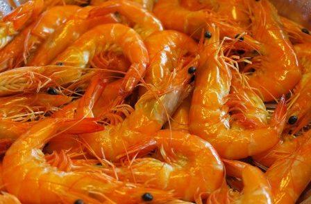 Rêver de crevettes signification exacte