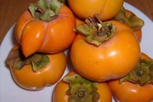 Rêver de kaki fruit et son interprétation:
