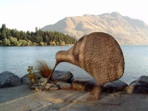 Rêver de kiwi l'oiseau: