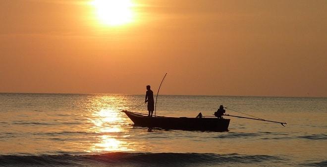 Rêver de pêcher et son interprétation: