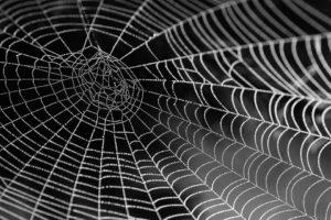 Rêver de toile d'araignée et son interprétation: